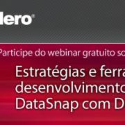 Webinar: Estratégias e ferramentas para desenvolvimento de aplicações DataSnap com Delphi XE