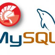 Delphi and MySQL